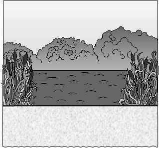 Дюймовочка. Вид сцены с рекой.